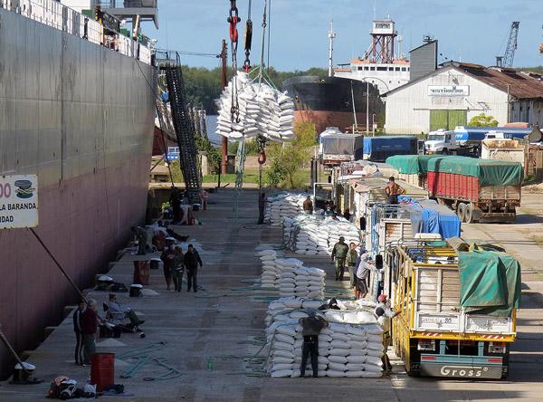 Informan que son 300 los trabajadores ocupados para la carga del buque en el puerto local el - Trabajo en el puerto ...