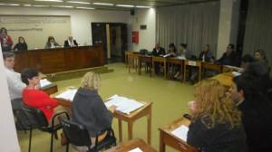 17-7-14-Sesión del Concejo.jpg 008