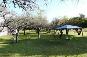 Parque de la ciudad-arboles