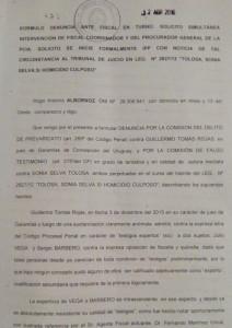 """Rojas fue acusado por Albornoz de haber dado el visto bueno para exponer en el futuro debate a dos médicos presentados por el abogado de Tolosa, como """"testigos expertos"""" sin tener ninguna relación con el hecho."""